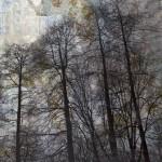 Alberi - 100 x 120 tela