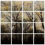 Alberi - 190 x 126 legno resinati