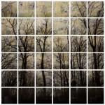 Alberi - 190 x 190 legno