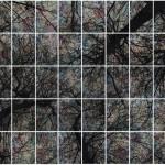 Alberi vertigine - 268 x 183 tele