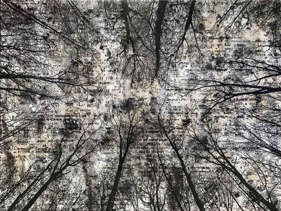 Bianco e nero quattro terzi - 100 x 70
